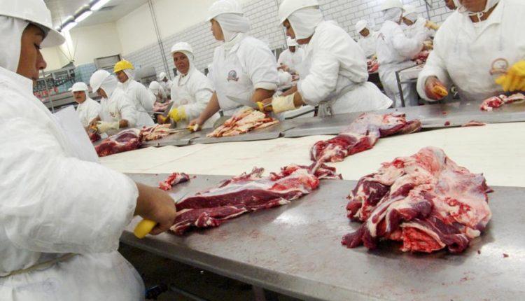 انتاج وتداول اللحوم الحمراء المشكلات والحلول