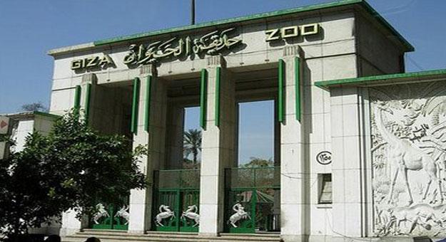 حدائق الحيوان بالجيزة.. أجمل وأكبر حدائق مصر
