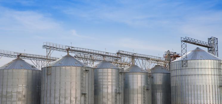 تخزين الحبوب بمصانع الاعلاف والوقاية من الاصابات الفطرية