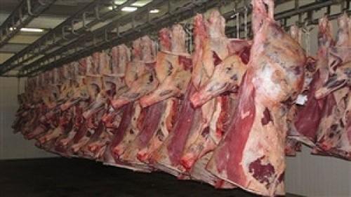 أعلامنا العبقرى واللحوم المهرمنة