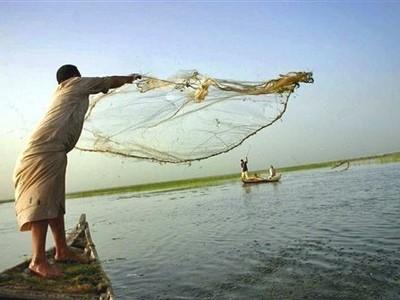 1800كيلومتر سواحل ونهر النيل و8بحيرات ونستورد الاسماك