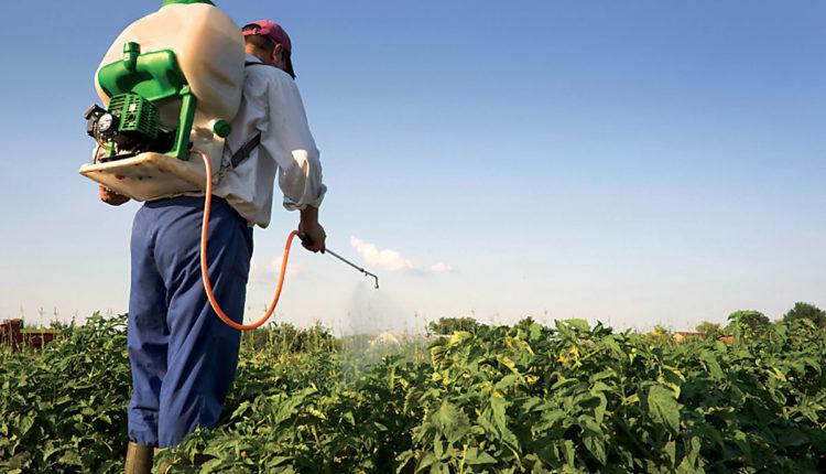 ماهي الحدود المسموحه لمتبقيات المبيدات في الغذاء