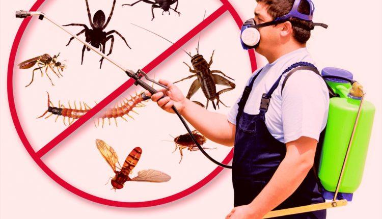 طرق تقسيم المبيدات