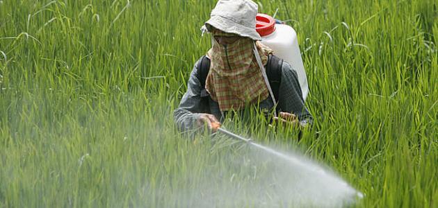 ملخص لأهم المبيدات الحشرية